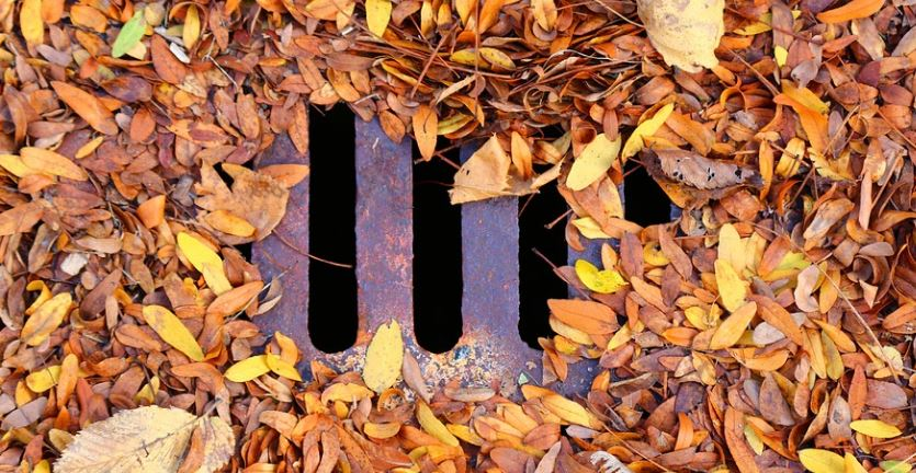 outside-drain-clogged-by-leaves